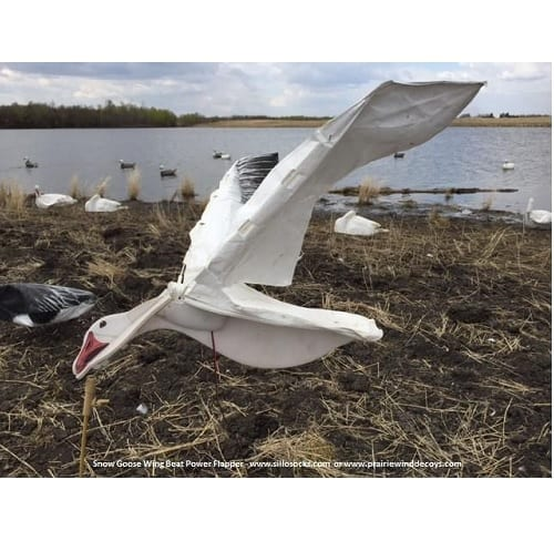 SILLOSOCK WingBeat Snow Goose Power Flappers