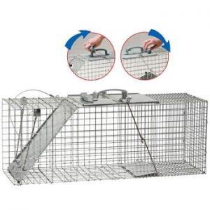 HAVAHART Cage pour animaux Easy Set de Havahart – Grande Taille (UNE PORTE) #1085
