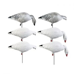 Snow Goose - Decoys - Distribution Plein Air